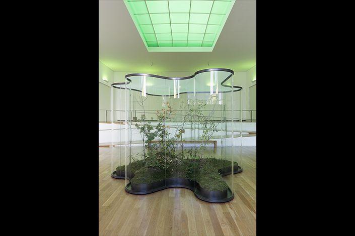 Daniel Steegmann Mangrané A Transparent Leaf Instead Of The Mouth, 2016-2017 Installation view, Fundação de Serralves, Porto, 2017 Courtesy the artist and Esther Schipper, Berlin Photo: Andrea Rossetti