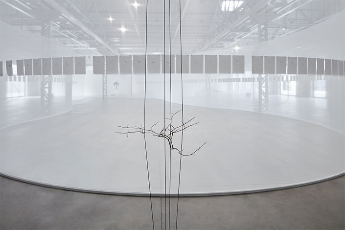 Daniel Steegmann Mangrané Geometric Nature/Biology, 2011 Installation view at Pirelli HangarBicocca, Milan, 2019 Courtesy of the artist and Pirelli HangarBicocca, Milan Photo: Agostino Osio