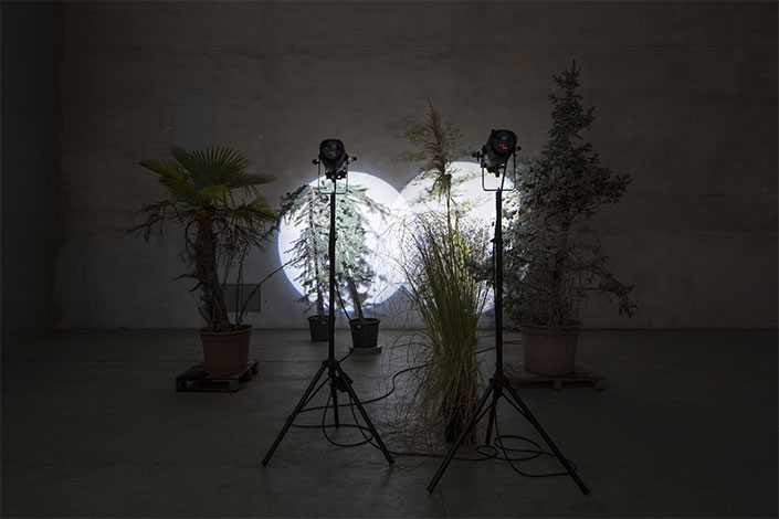Cerith Wyn Evans, Still life (In course of arrangement...), 2019 Installation view at Pirelli HangarBicocca, Milan, 2019. Courtesy of the artist; White Cube and Pirelli HangarBicocca. Photo: Agostino Osio