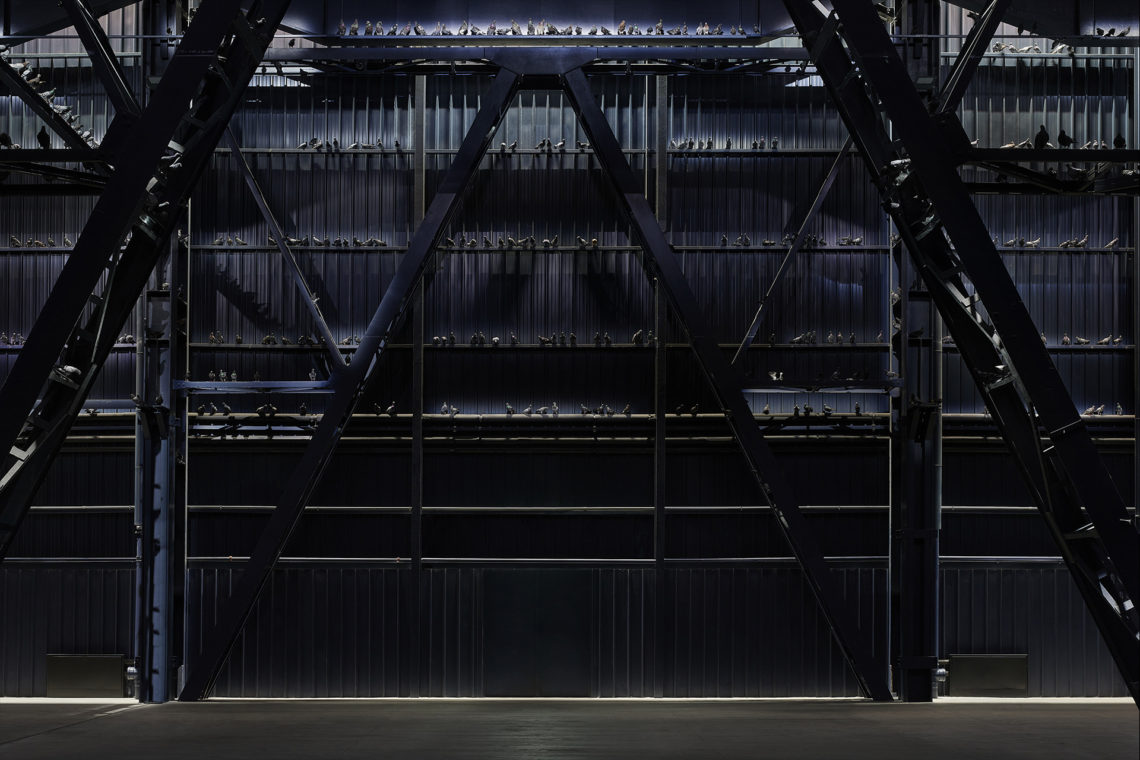 Maurizio Cattelan Ghosts, 2021 Installation view, Pirelli HangarBicocca, Milan, 2021 Taxidermied pigeons Environmental dimensions Courtesy the artist and Pirelli HangarBicocca, Milan Photo: Agostino Osio