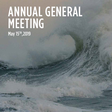 Annual General Meeting and Board of Directors