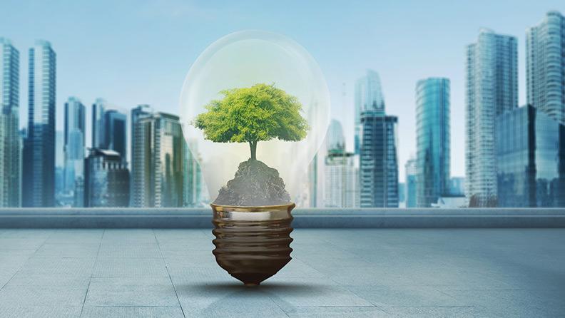 Mudança climática: como combater o aquecimento global e a poluição 1
