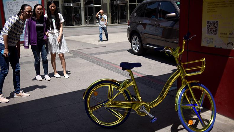 Bellezze di bicicletta 02