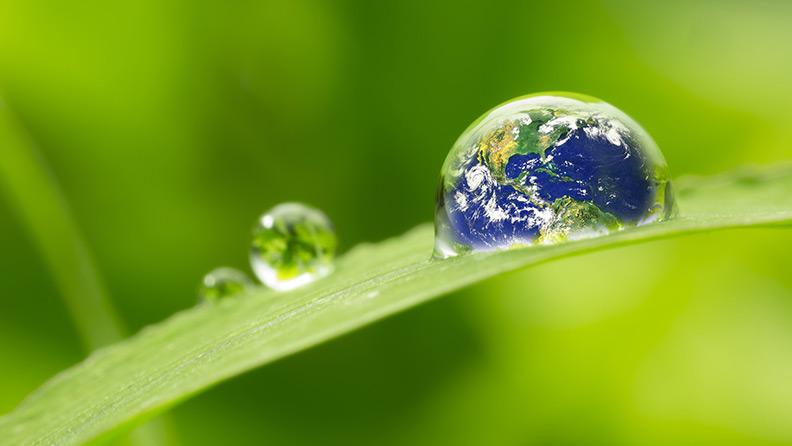 10 idee per rispettare l 39 ambiente mettiamole in pratica for Idee ambiente