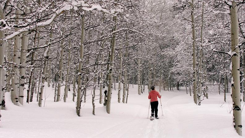 Vacanze di lusso sulla neve