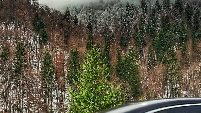 A winter on the road - Transylvania, Romania