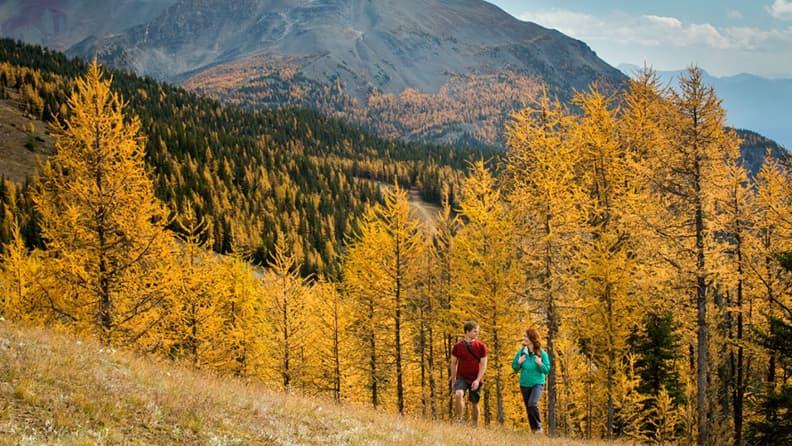 Innamorarsi dell'autunno nordamericano - Banff & Lake Louise
