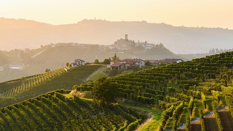 Italy, beauty and cuisine - Roero