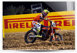 Antonio Cairoli in 2017